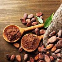 """Какао порошок алкализованный  """"Gerkens Cacao"""" GHANA 200гр"""
